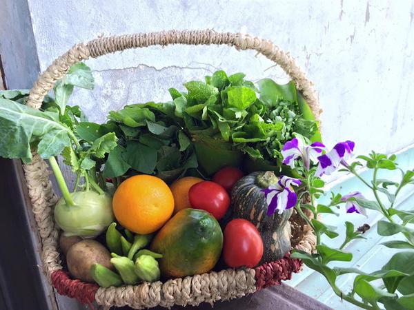 Bài tuyên truyền đảm bảo vệ sinh an toàn thực phẩm trong dịp Tết Nguyên Đán Mậu Tuất
