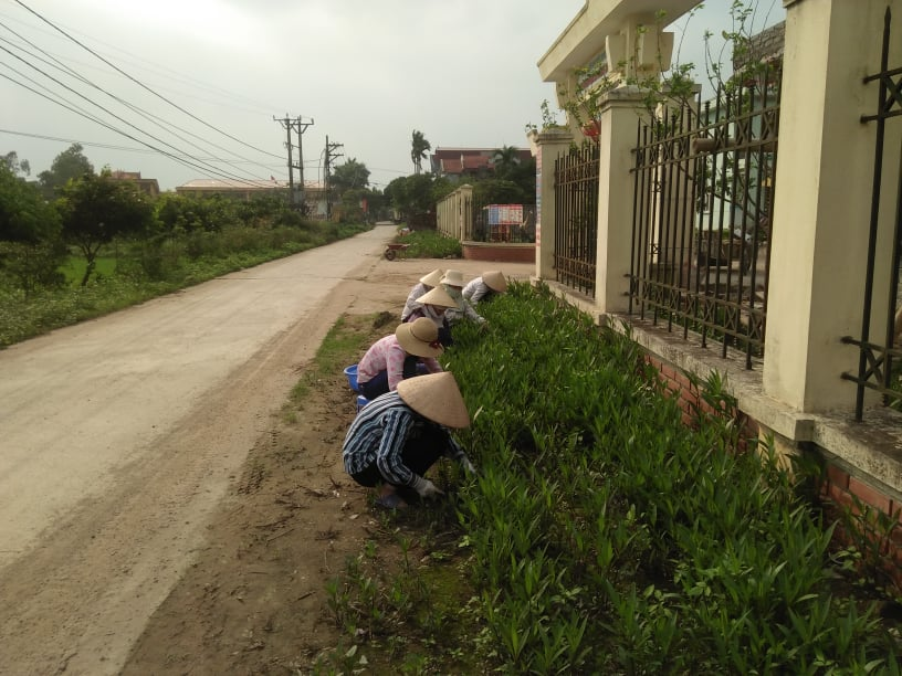 Thực hiện theo công văn trường Mầm non xã Đạo Lý đã tổ chức cho cán bộ, giáo viên và nhân viên lao động tổng dọn vệ sinh môi trường trong và ngoài khu vực nhà trường